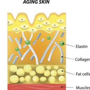 تحریک کلاژن سازی در پوست